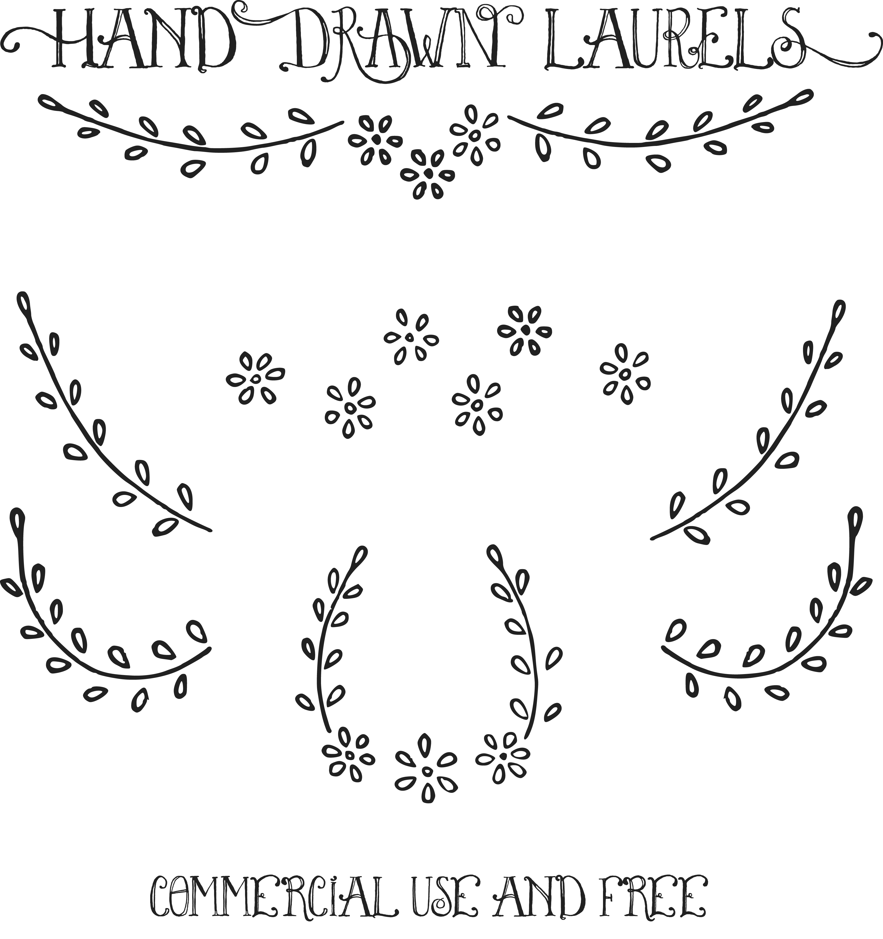 collection of laurel. Vines clipart hand drawn