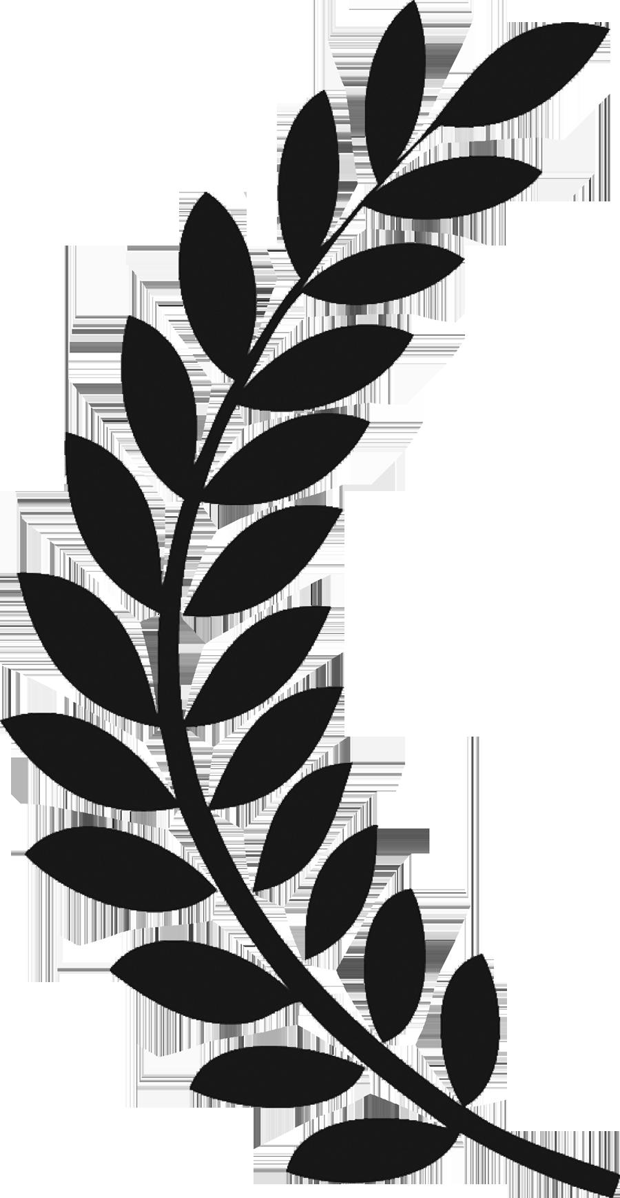 Laurel twig