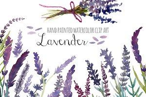 Lavender clipart. Watercolor clip art illustrations