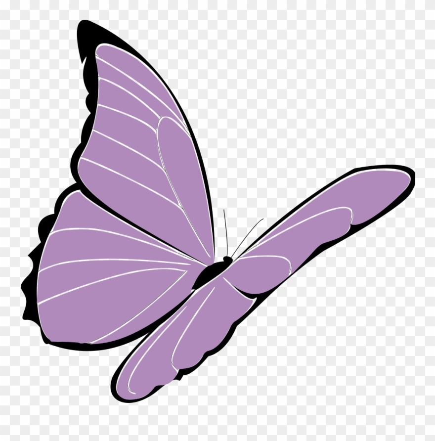 Lavender clipart cartoon. Butterfly purple png
