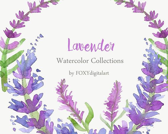 Lavender clipart lavender bouquet. Clip art watercolor collection