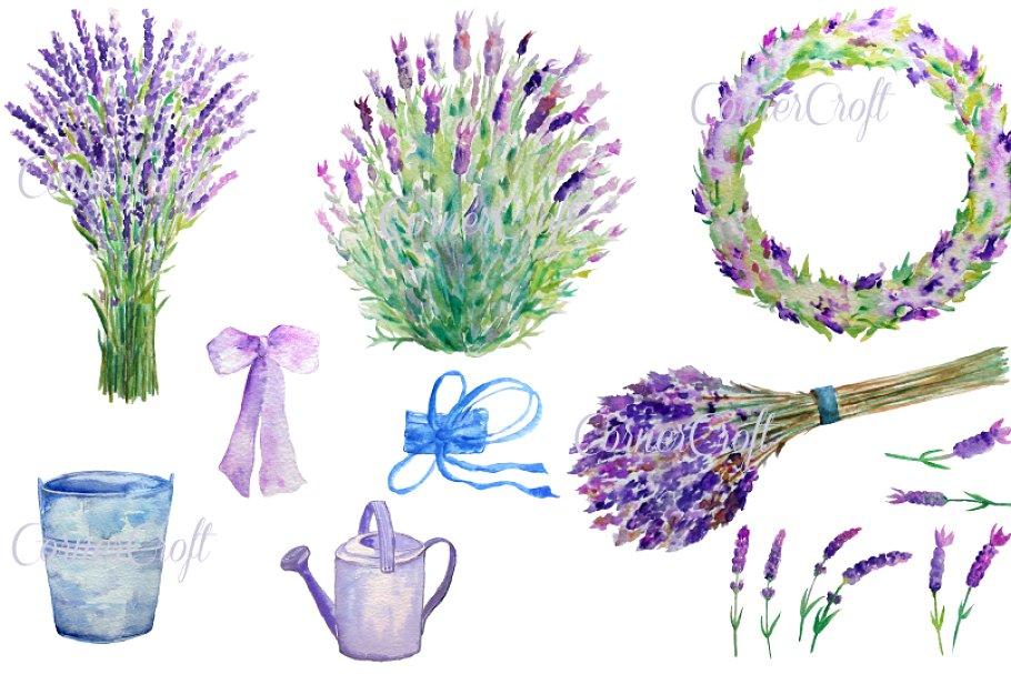 Watercolour clip art illustrations. Lavender clipart lavender bunch