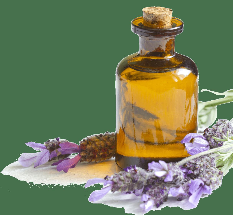 Transparent png stickpng. Oil clipart lavender oil