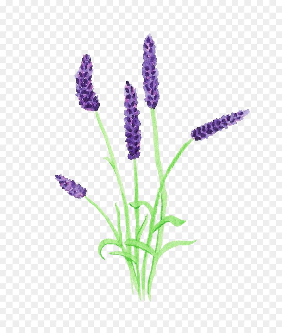 Lavender clipart lavender plant. Flowers background flower