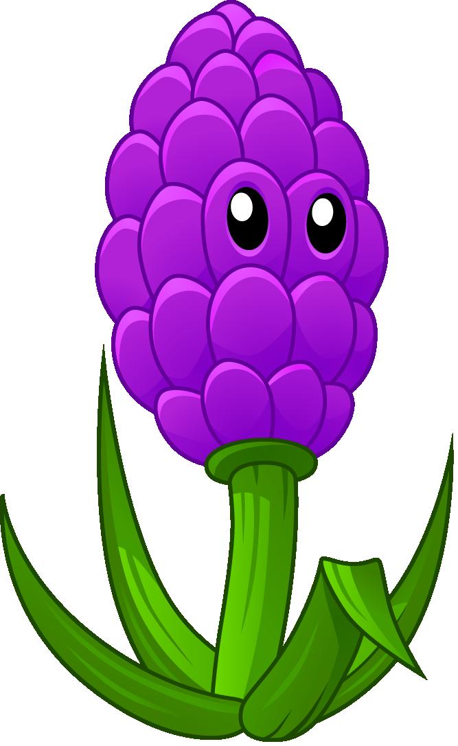 Image lavenderhd png plants. Lavender clipart lavender plant