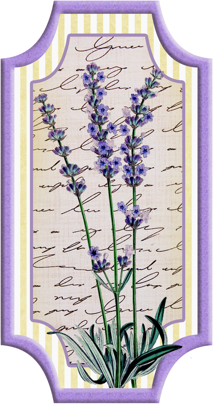 Pin by terry anne. Lavender clipart printable