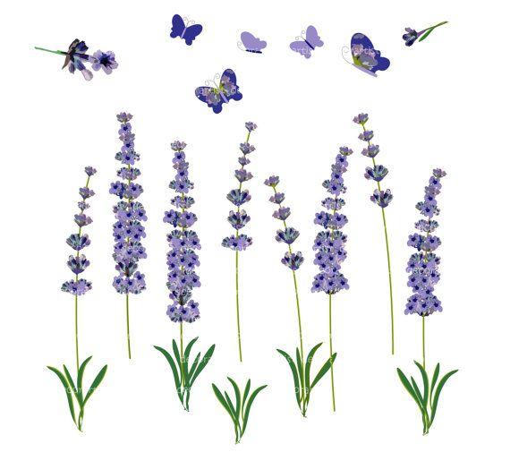 Lavender clipart vintage. Flower clip art botanical