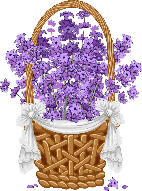 Floral background with png. Lavender clipart vintage