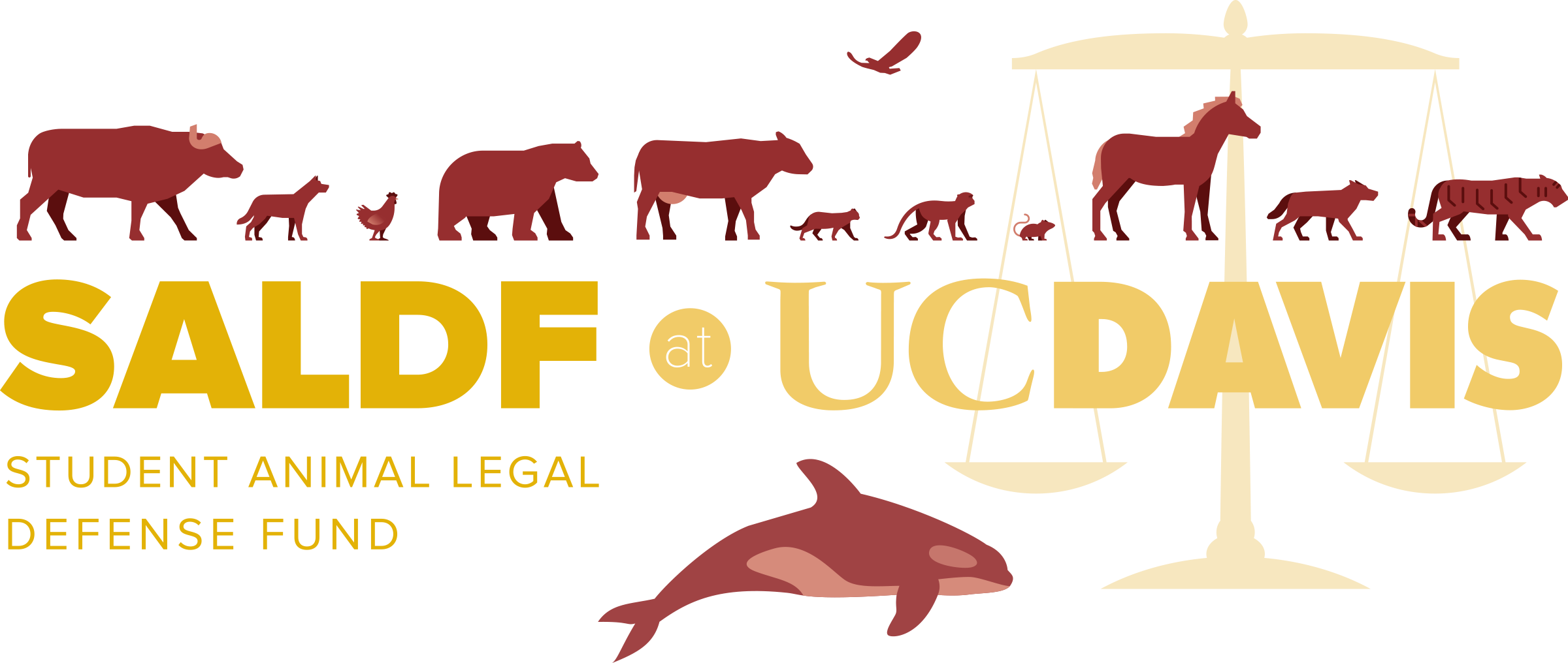 Welcome to the animal. Legal clipart law student