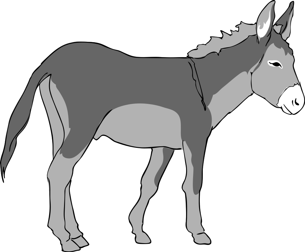 Collection of donkey best. Mule clipart sad