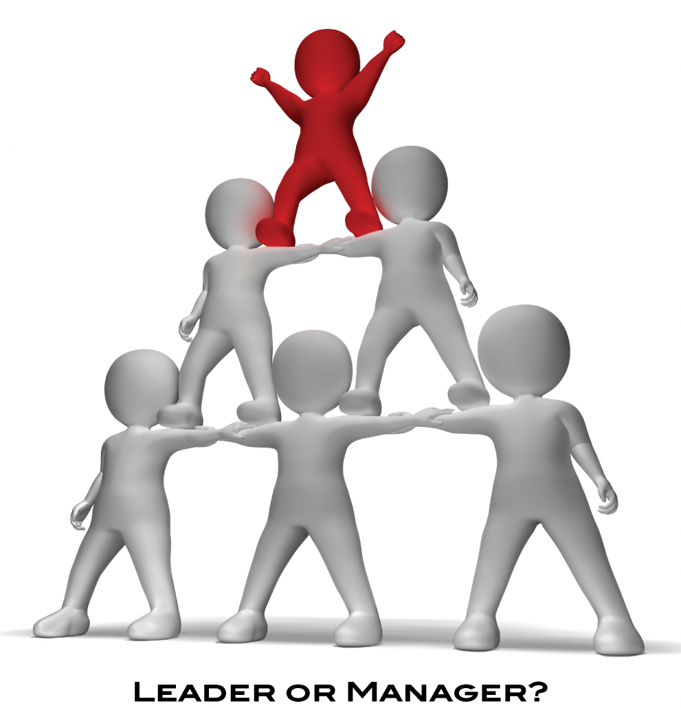 Leader clipart team manager. Management rise performance group