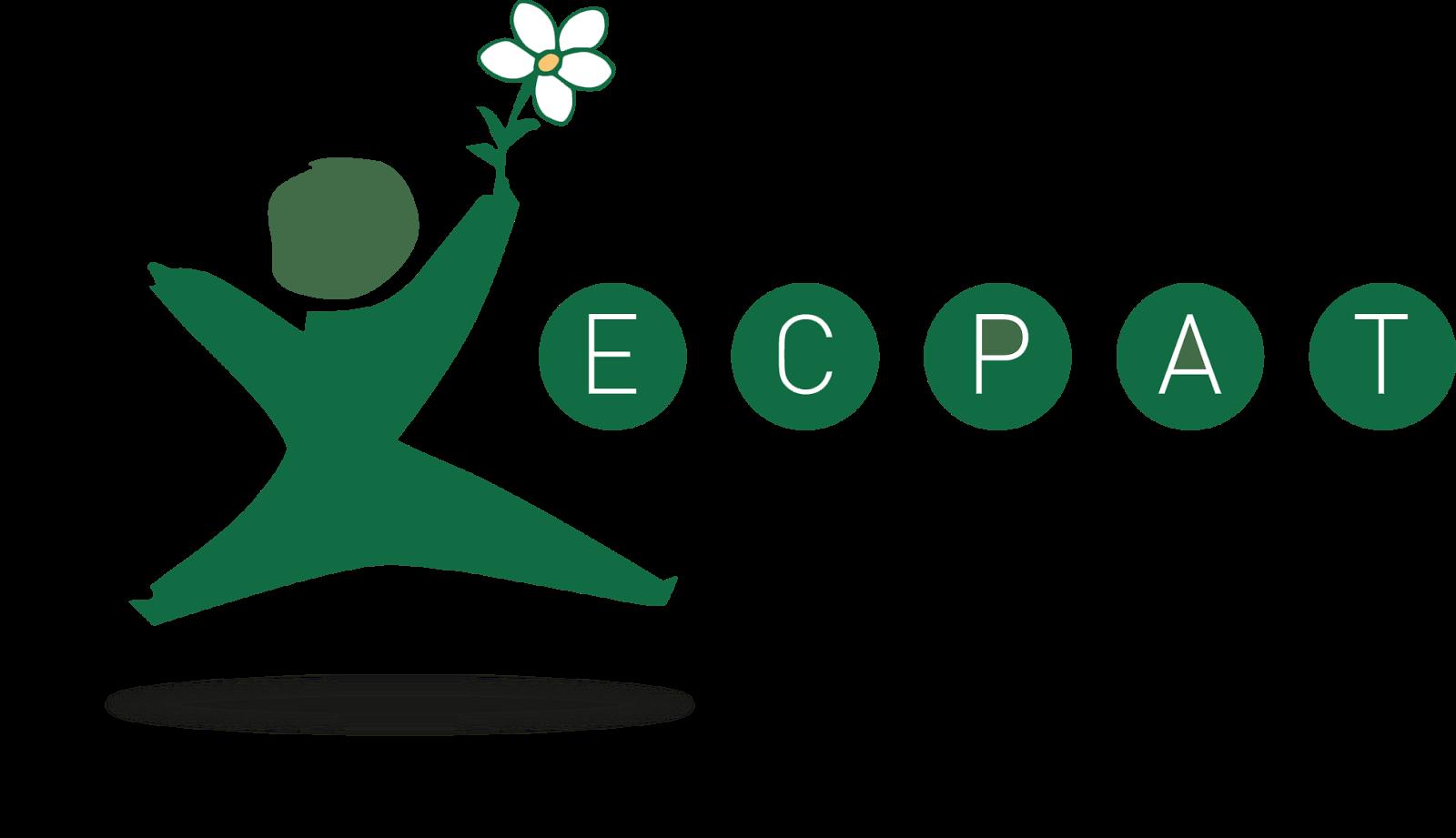 Leadership clipart executive director. Ecpat international job vacancy