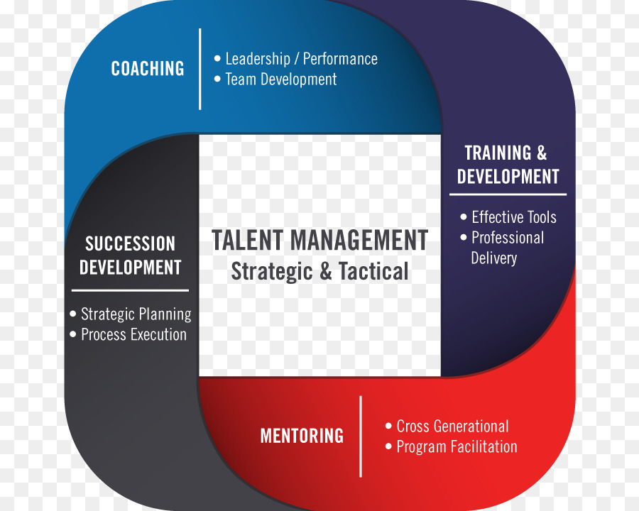 Talent management and development. Planning clipart training plan