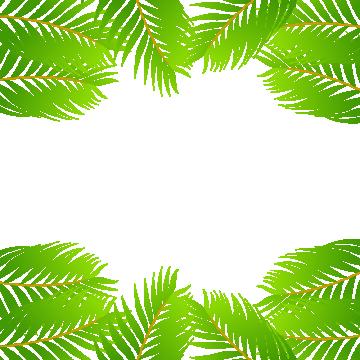 Leaf border png. Green images vectors and
