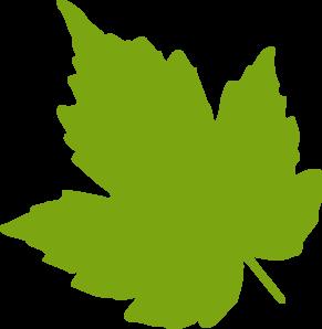 Leaf clipart. Fall green