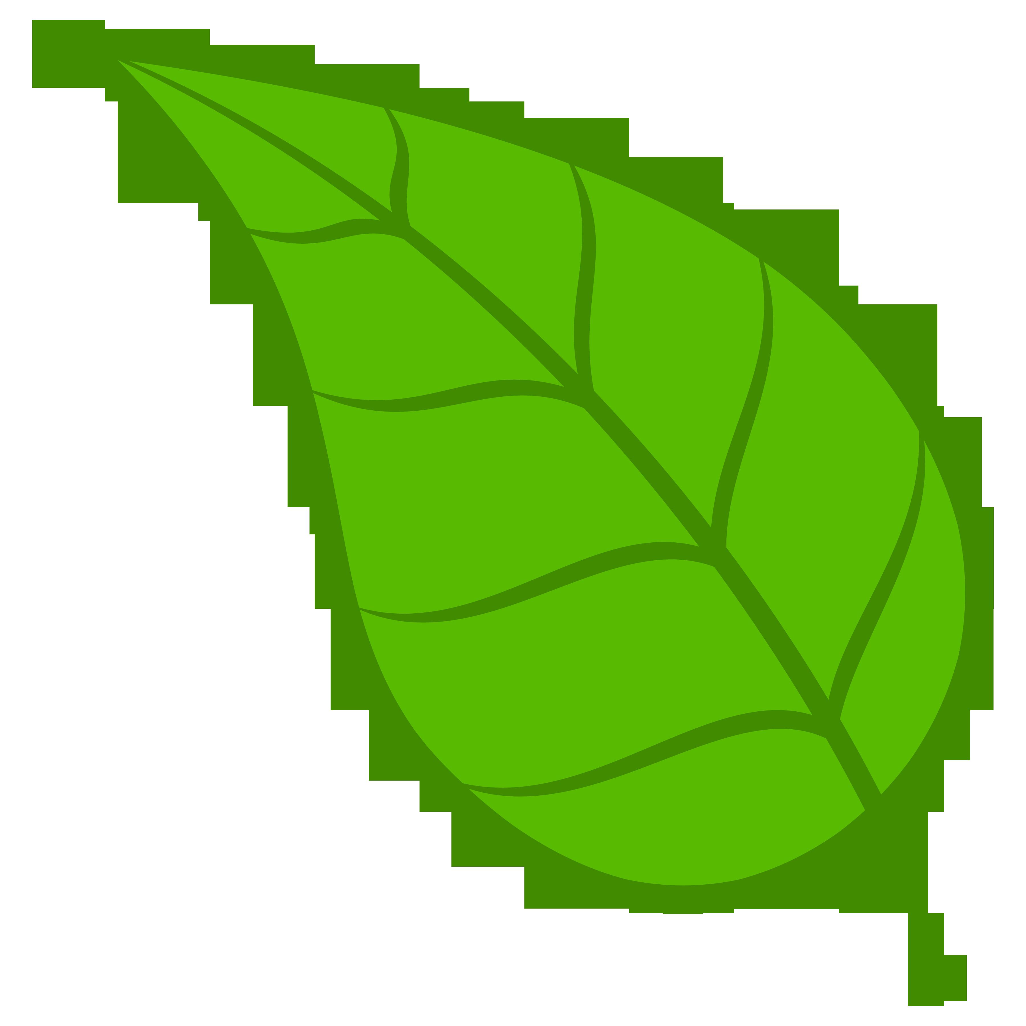 Leaves green foliage . Leaf clipart