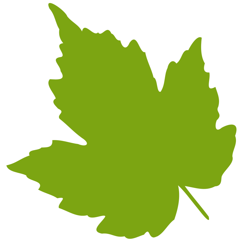 Free green shape cliparts. Leaf clipart face