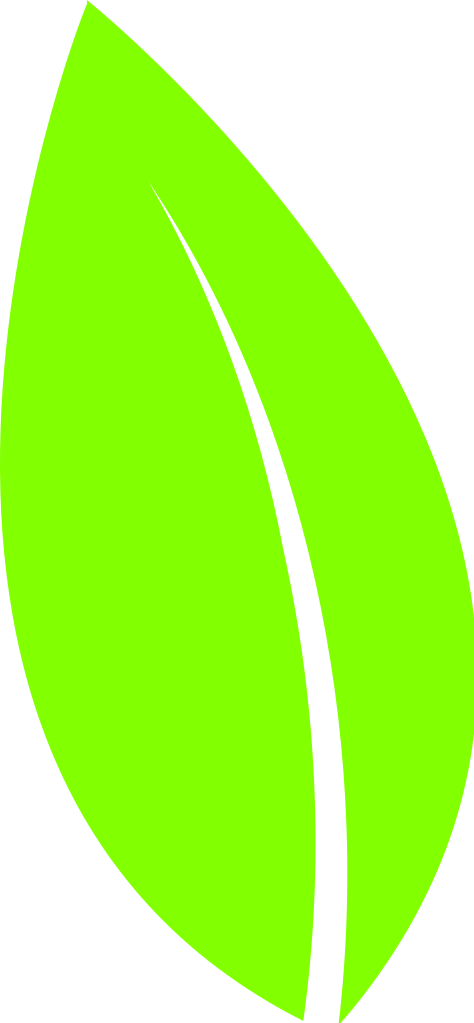 File svg wikimedia commons. Leaf clipart icon