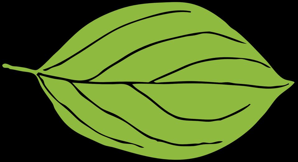 Public domain clip art. Leaves clipart illustration