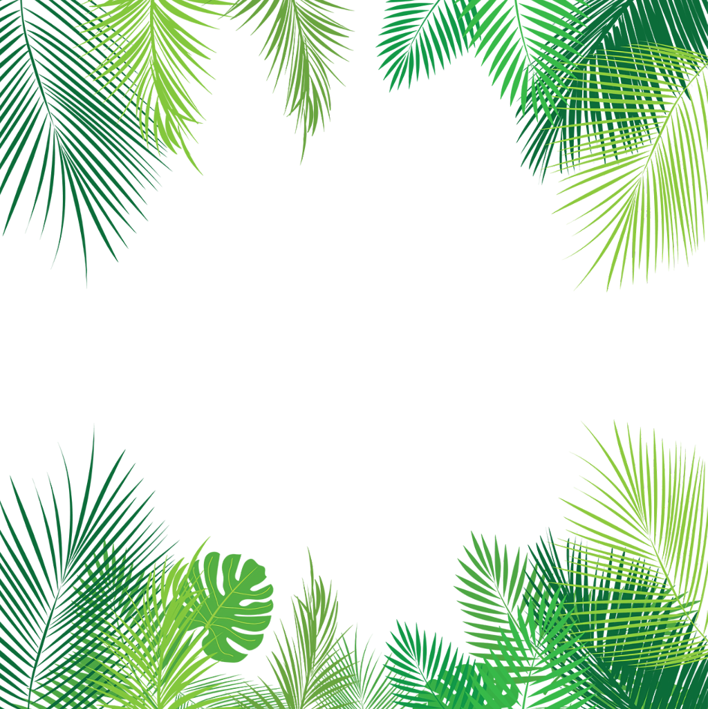 Tropical palmleaves summer overlay. Leaves border png