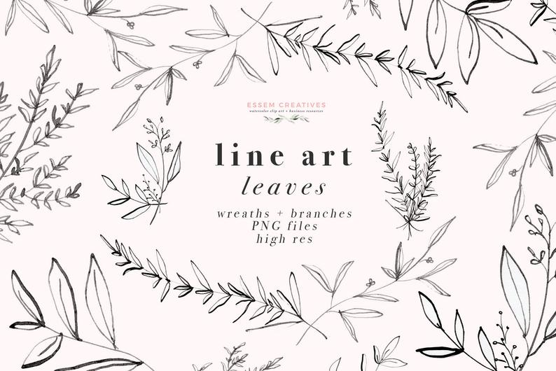 Line art botanical greenery. Leaves clipart illustration