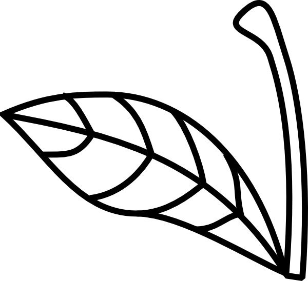 Stem and leaf free. Pineapple clipart atis