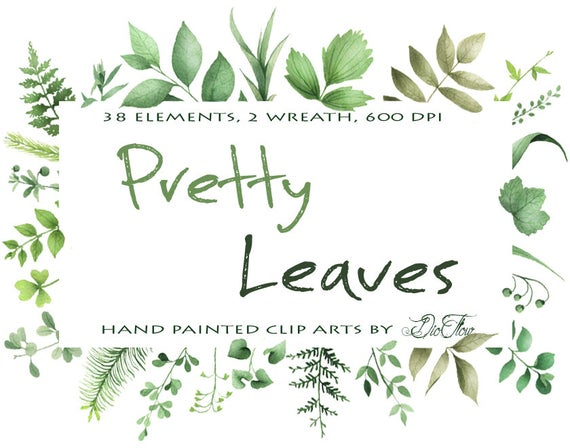 Leaf leaves vector clip. Woodland clipart greenery