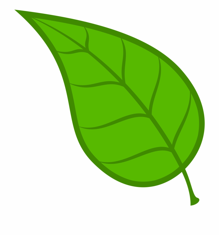 Leaf free download clip. Leaves clipart vector