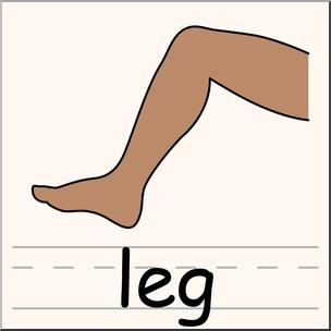 Leg clipart. Clip art parts of