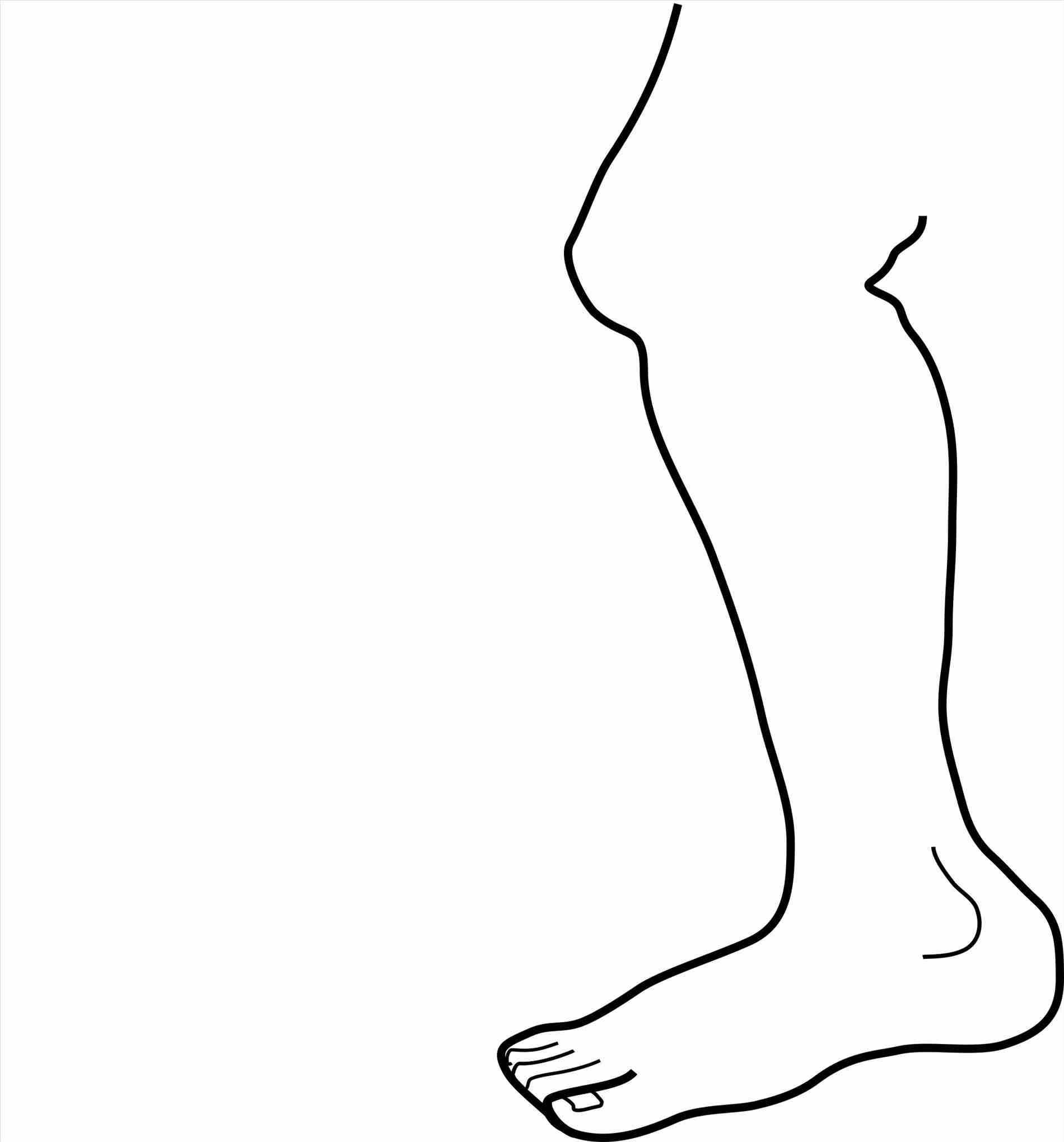 Leg clipart. Turkey black and white
