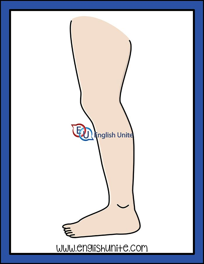 Legs clipart two. Noun leg clip art