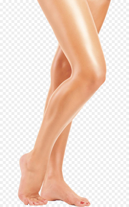 Leg clip art transparent. Legs clipart
