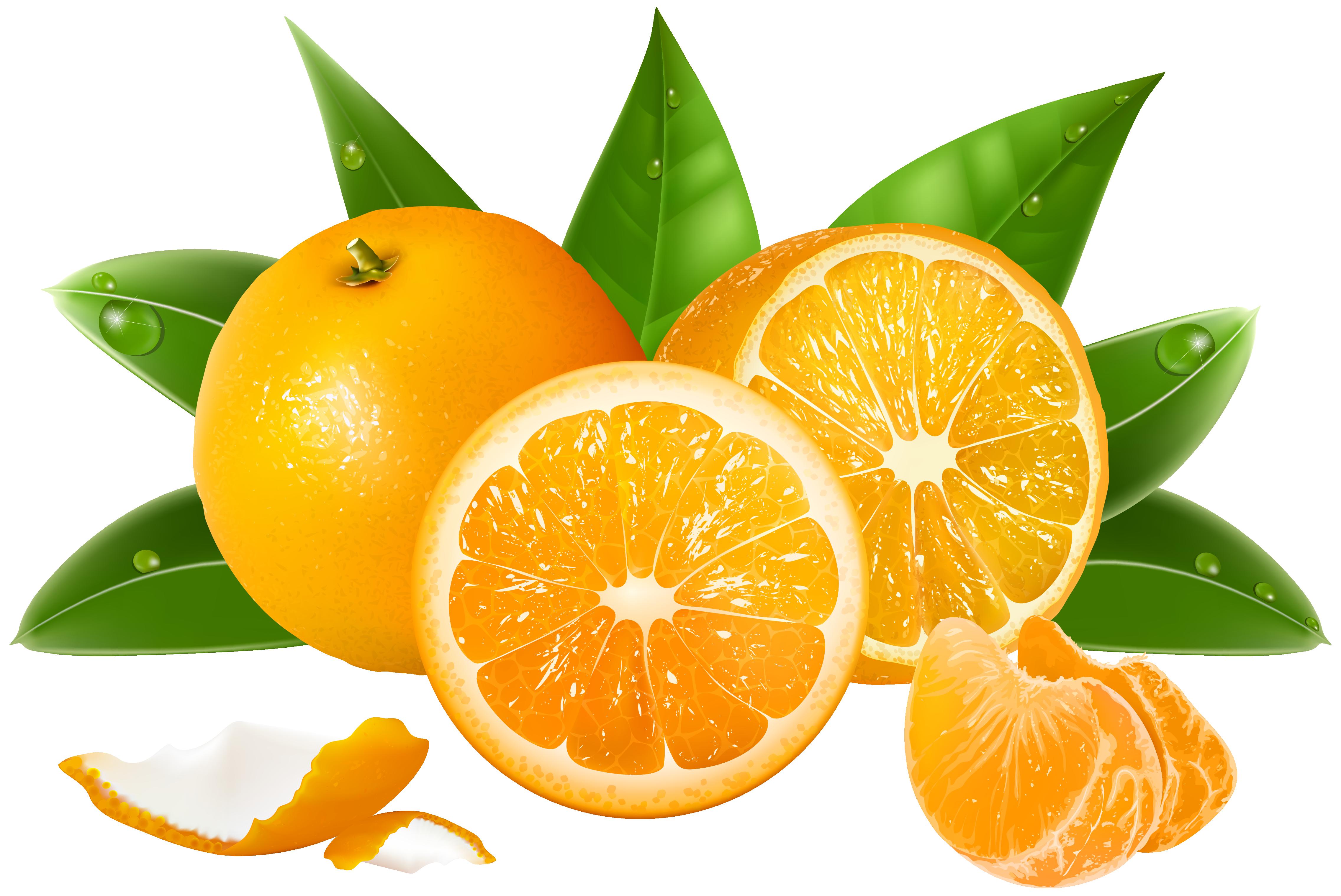 Juice Lemon Grapefruit Orange
