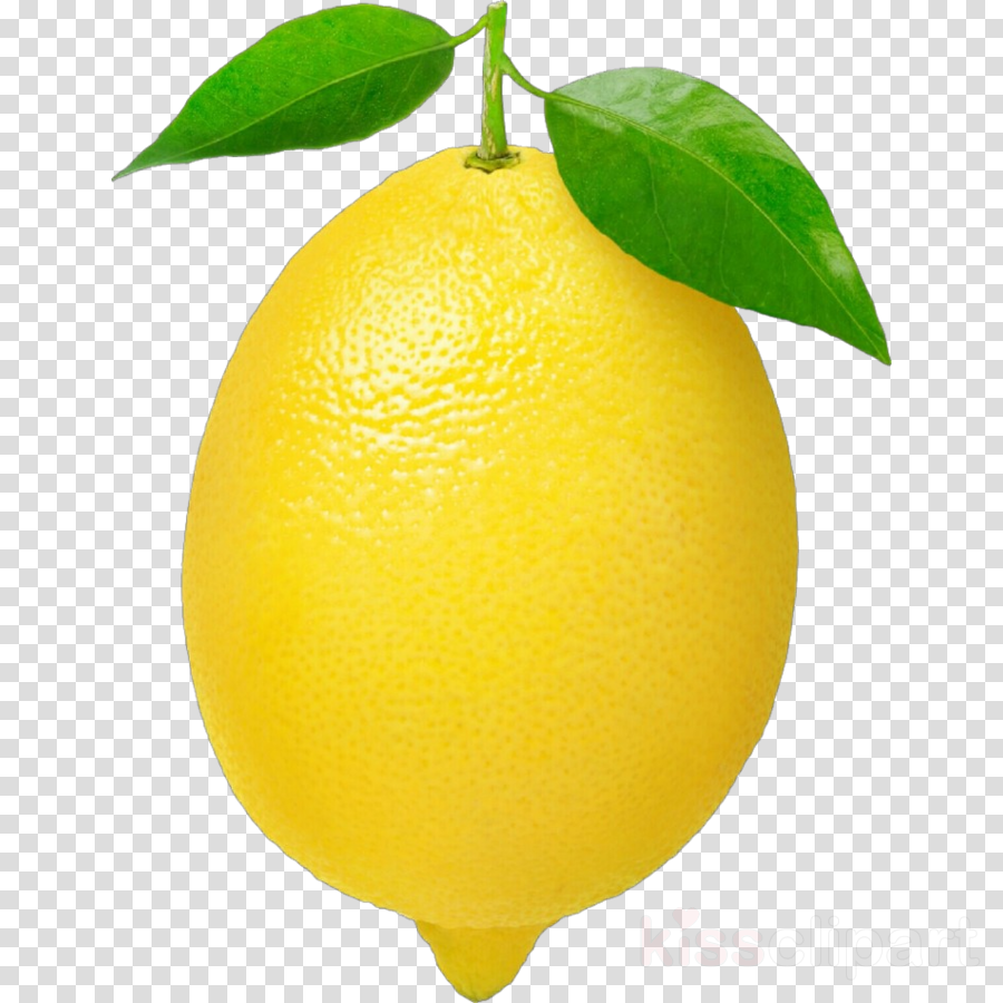Lemons clipart citron. Citrus lemon fruit yellow