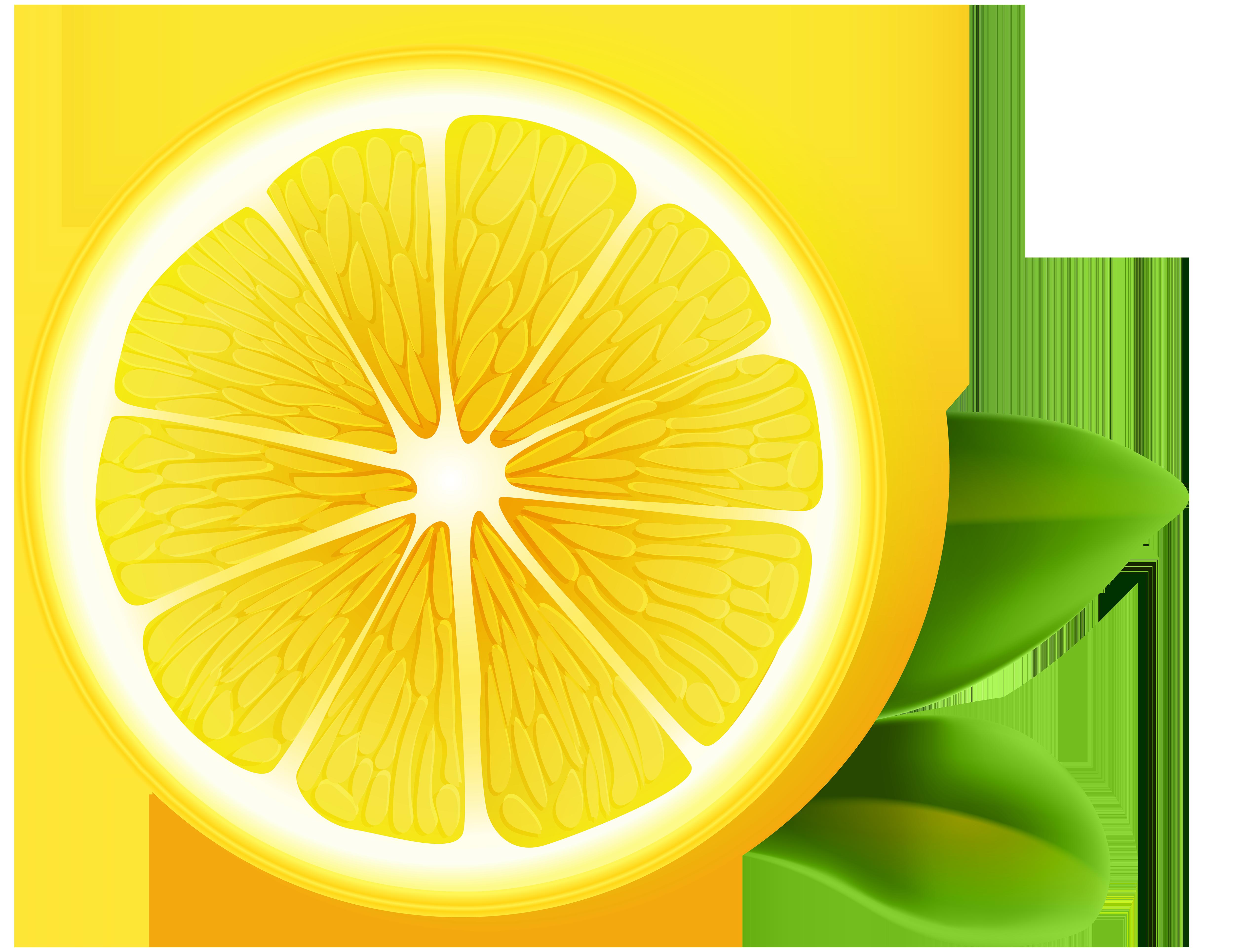 Lemon png clip art. Lemons clipart transparent background