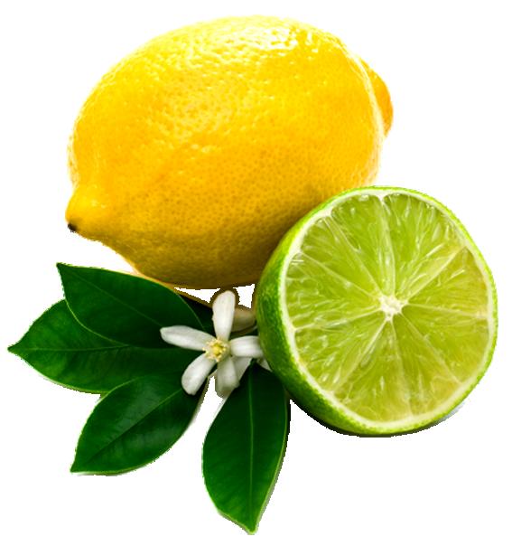 Lemons clipart transparent background. Lemon png images and