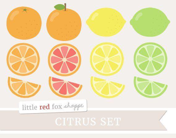 Citrus fruit clip art. Lemon clipart design cute