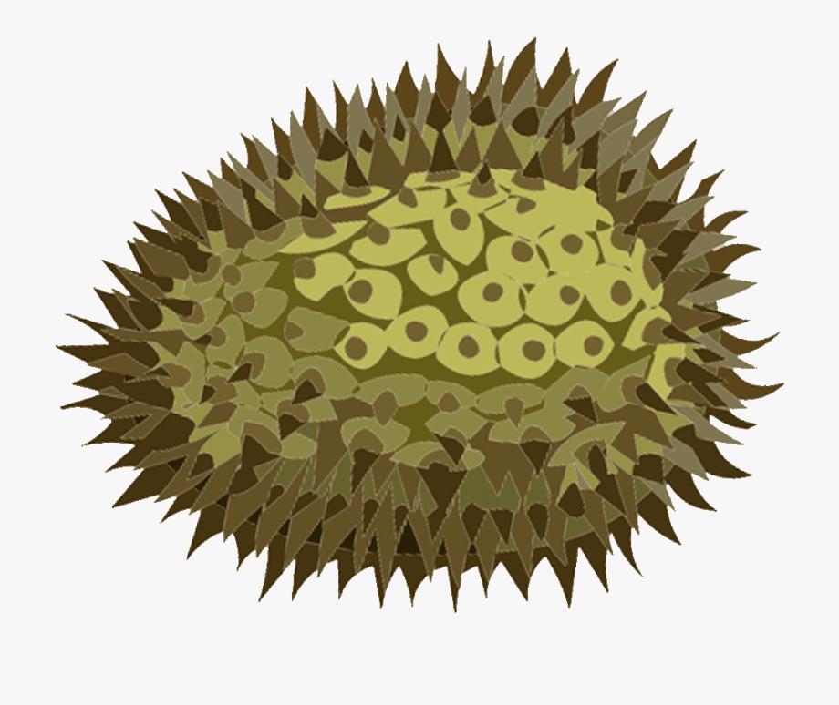 royalty free chakra. Lemons clipart durian fruit