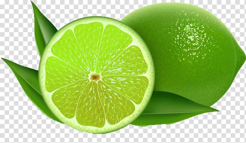 Lemons clipart freshness. Lemon persian lime key