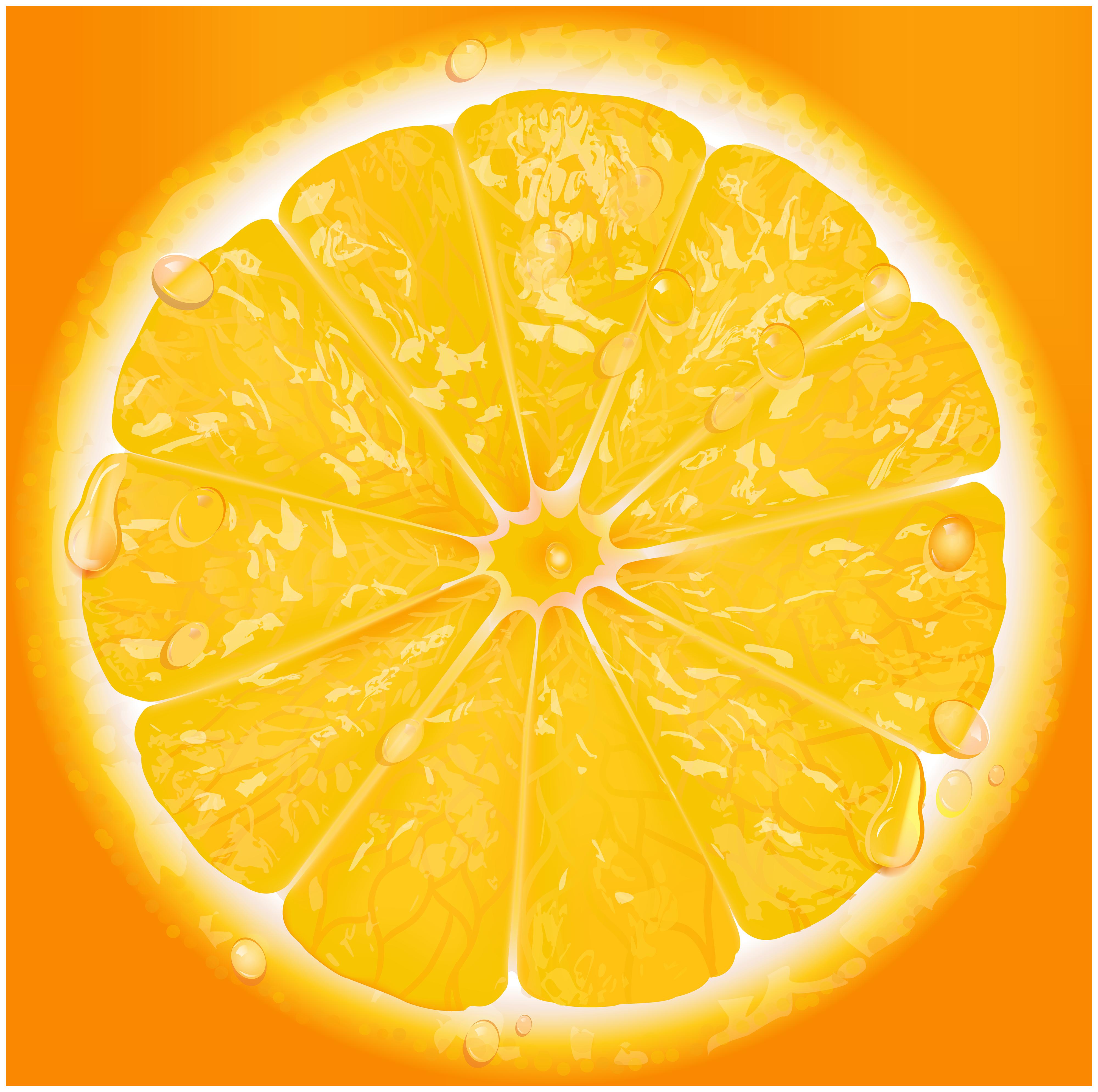 Lemon clipart lemon cake. Orange slice clip art