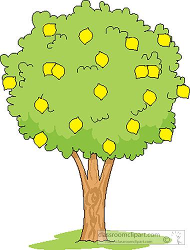Free lemon cliparts download. Lemons clipart citrus tree