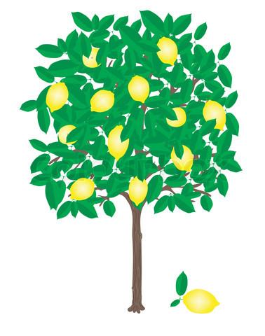 Lemons clipart citrus tree. Free lemon download clip