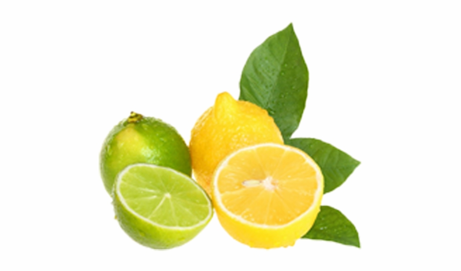 Lemon clip art limes. Lemons clipart lime