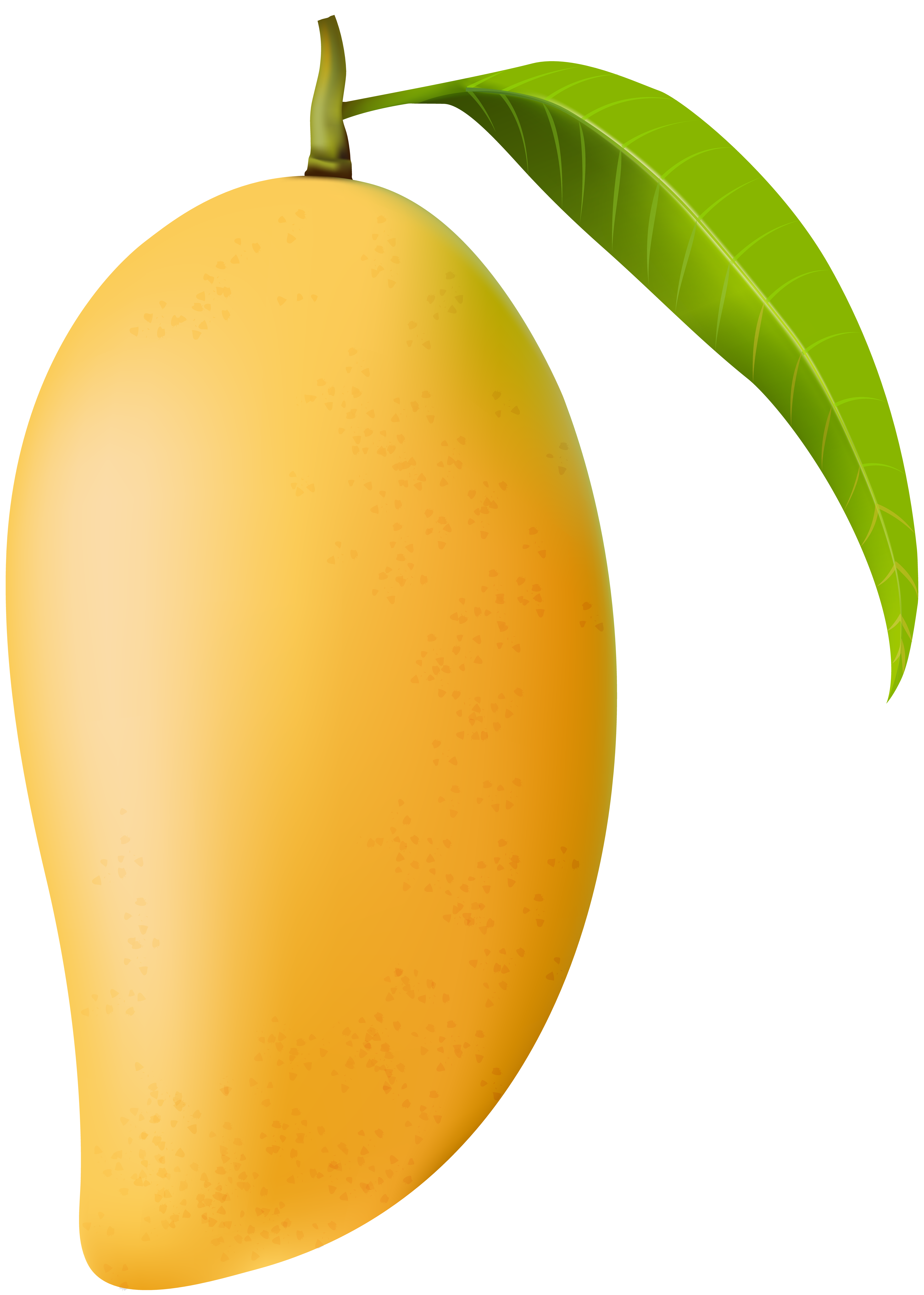 Mango PNG Clip Art Image