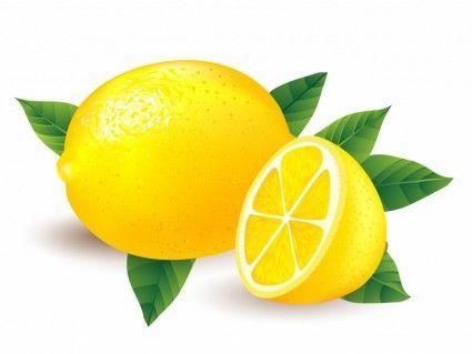 Lemons clipart vector. Enjoy wackyhabitat curated food
