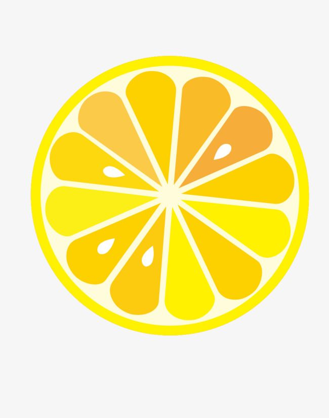 Yellow lemon slices cut. Lemons clipart vector