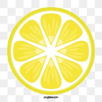 Lemons clipart vector. Lemon slice png psd