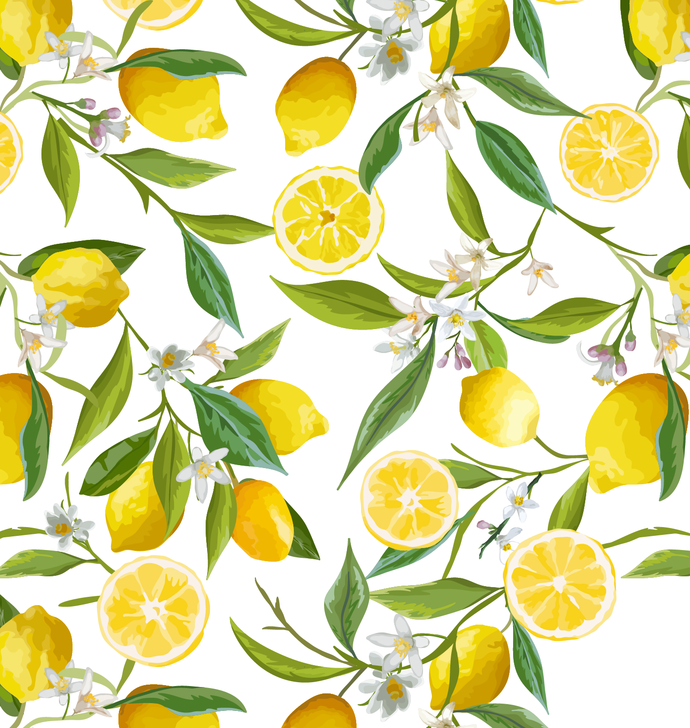 Lemon flower stock photography. Lemons clipart border