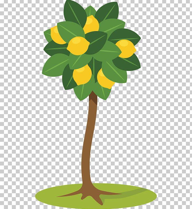 Lemon png branch desktop. Lemons clipart citrus tree