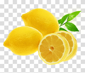 Lemon illustration fresh transparent. Lemons clipart high resolution